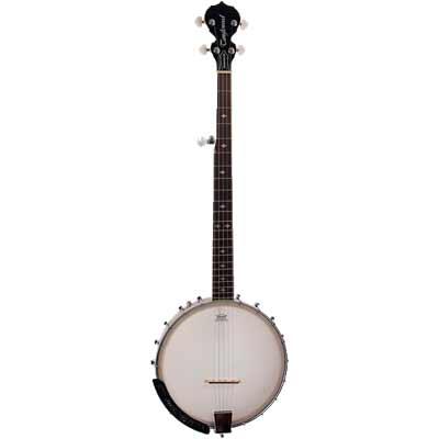 5-strängad banjo